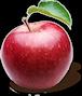 Owoc jabłka