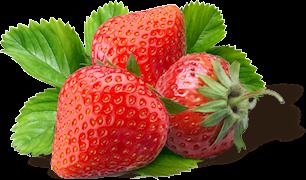 Polfeed owoce truskawki